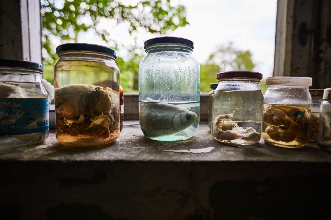 Experimental laboratory of radiation biology fish fishing abandoned