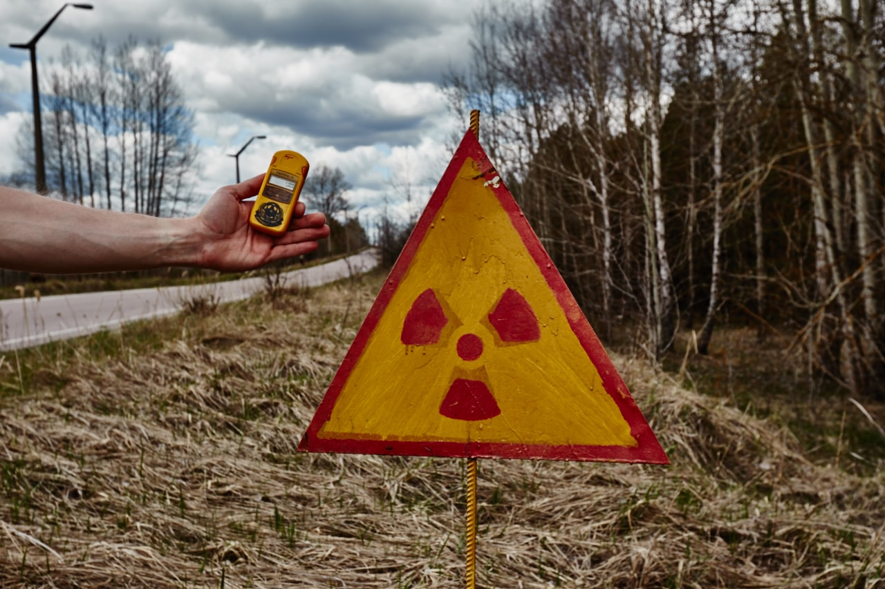 red forest radiation chernobyl now photo