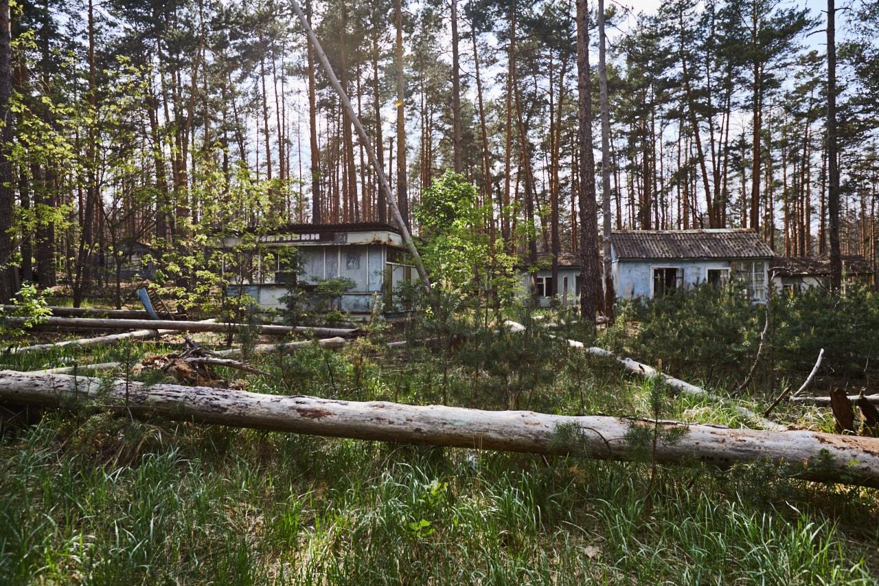 Summer camp abandoned kids
